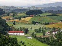 Weinanbau Dveri Pax in Slowenien